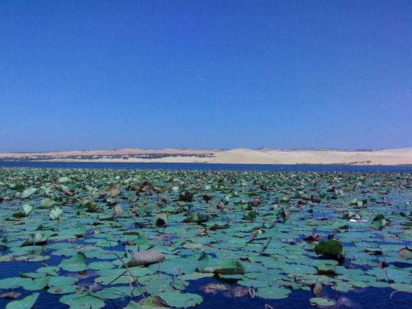Озеро Лотосов, Фантьет