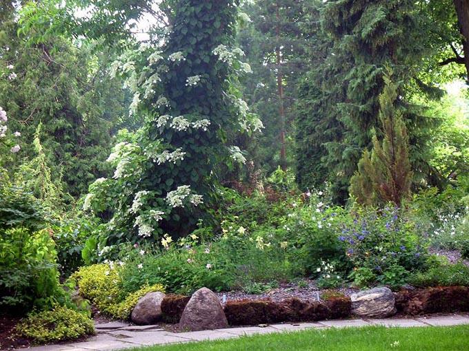 Ботанический сад в Тивате