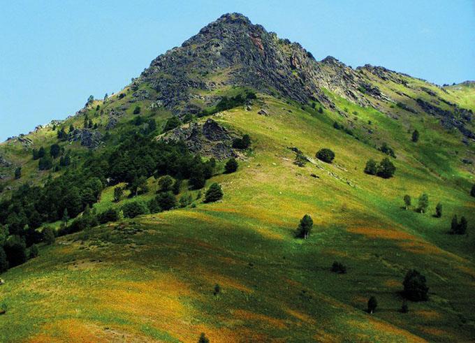Где лучше отдыхать в Македонии: Национальный парк Пелистер