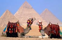 Полезные советы туристам в Египте