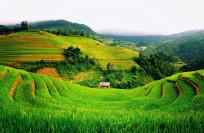 Отдых во Вьетнаме в ноябре