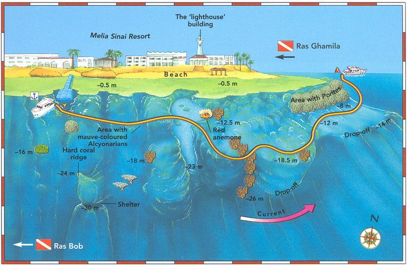 Карта бухты Рас Насрани