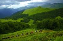 Когда лучше ехать в Абхазию